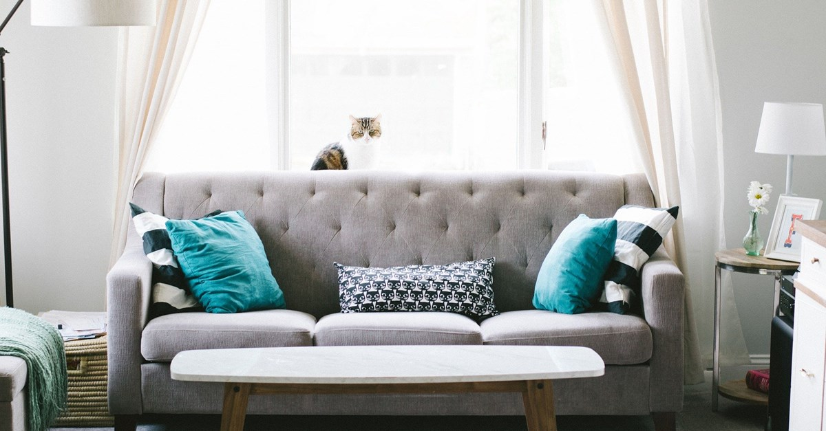 Your Homes Newcastle Furniture Packs What You Need To Know Karbon Homes